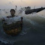 La mangrove des Sundarbans. Bangladesh. Xavier Desmier