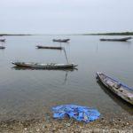 Mangroves d'Afrique de l'Ouest - Palmarin - Senegal - Xavier Desmier